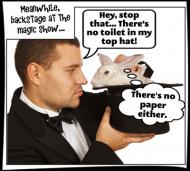 Misbehaving Bunny