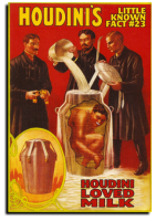 Houdini Loved Milk
